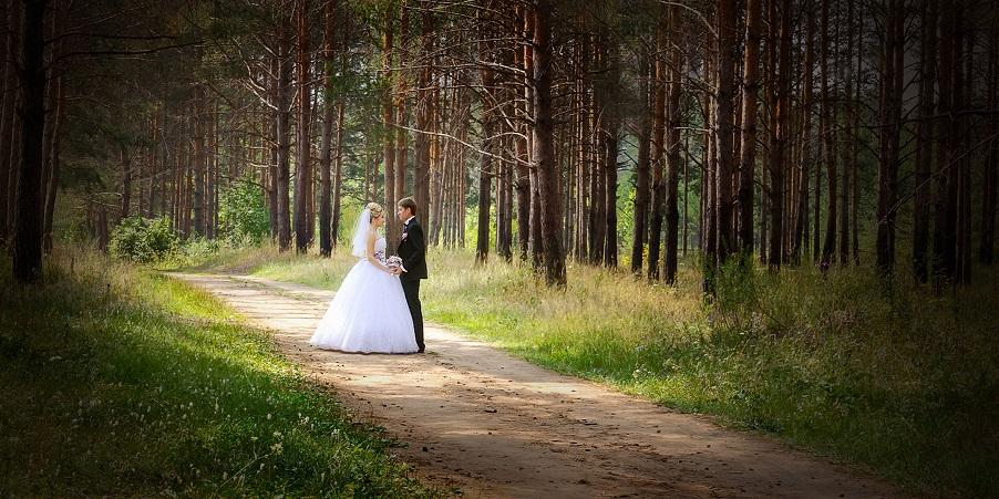 Сватбен фотограф в Банско