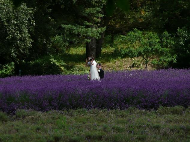 Сватбен фотограф в Разлог