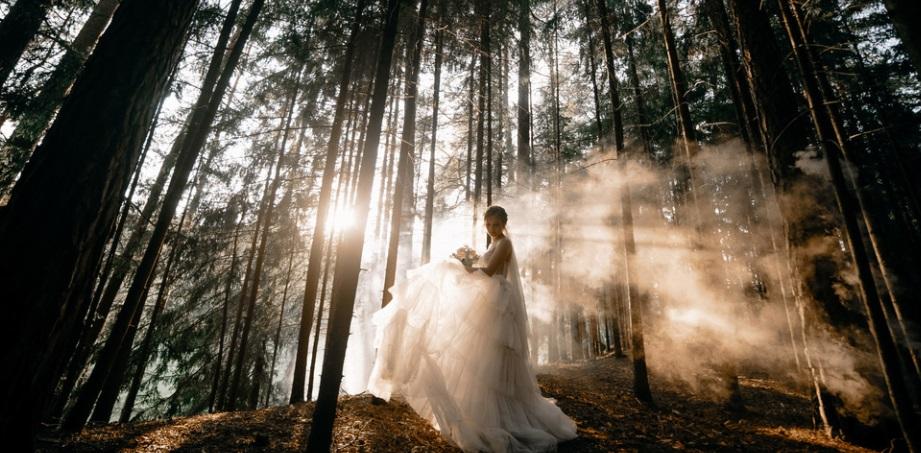 Сватбен фотограф в София Витоша